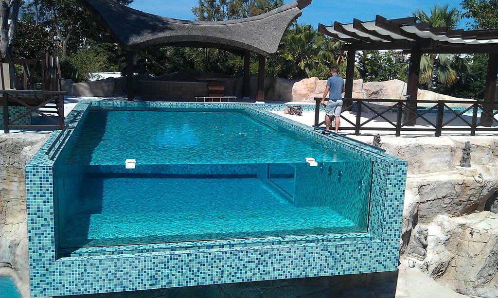 Piscinas buenos aires piscinas vidriadas for Fotos de piscinas climatizadas